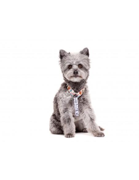 Arnés clásico para perros DUKIER modelo Tattoo