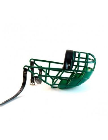 bozal galgo verde