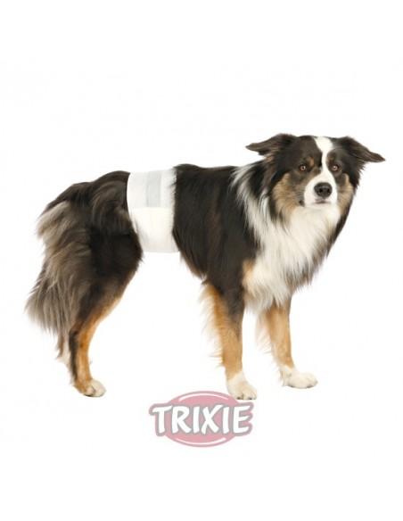 Pañales para perros, modelo machos