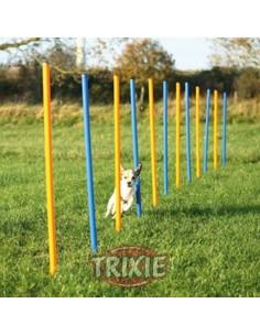 eslalon agility para perros
