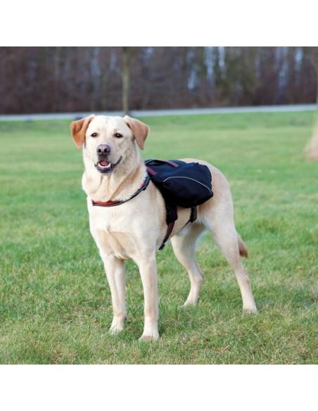Mochila de nylon ligera para llevar el perro
