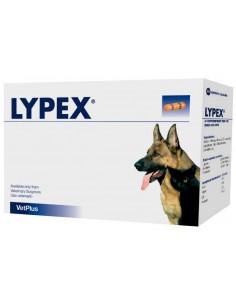 LYPEX suplemento alimenticio para problemas pancreáticos del perro