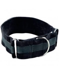 Collares galgos nylon forrado terciopelo martingale negro