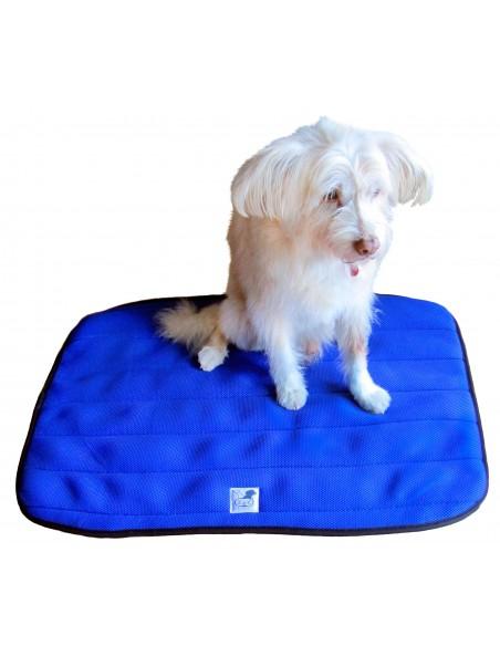 cama terapeutica especial para perros exclusiva de lucas y lola de color azul